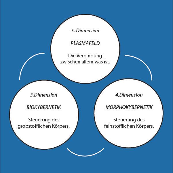 Mikropunktur vereint Biokybernetik, Morphokybernetik und Plasmafeld.